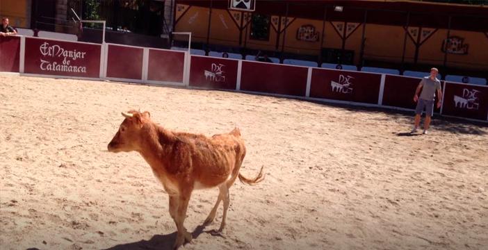 Capea en Almería